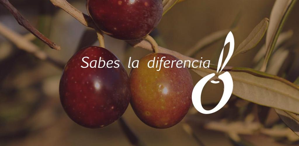 Diferencia entre distintos tipos de aceites