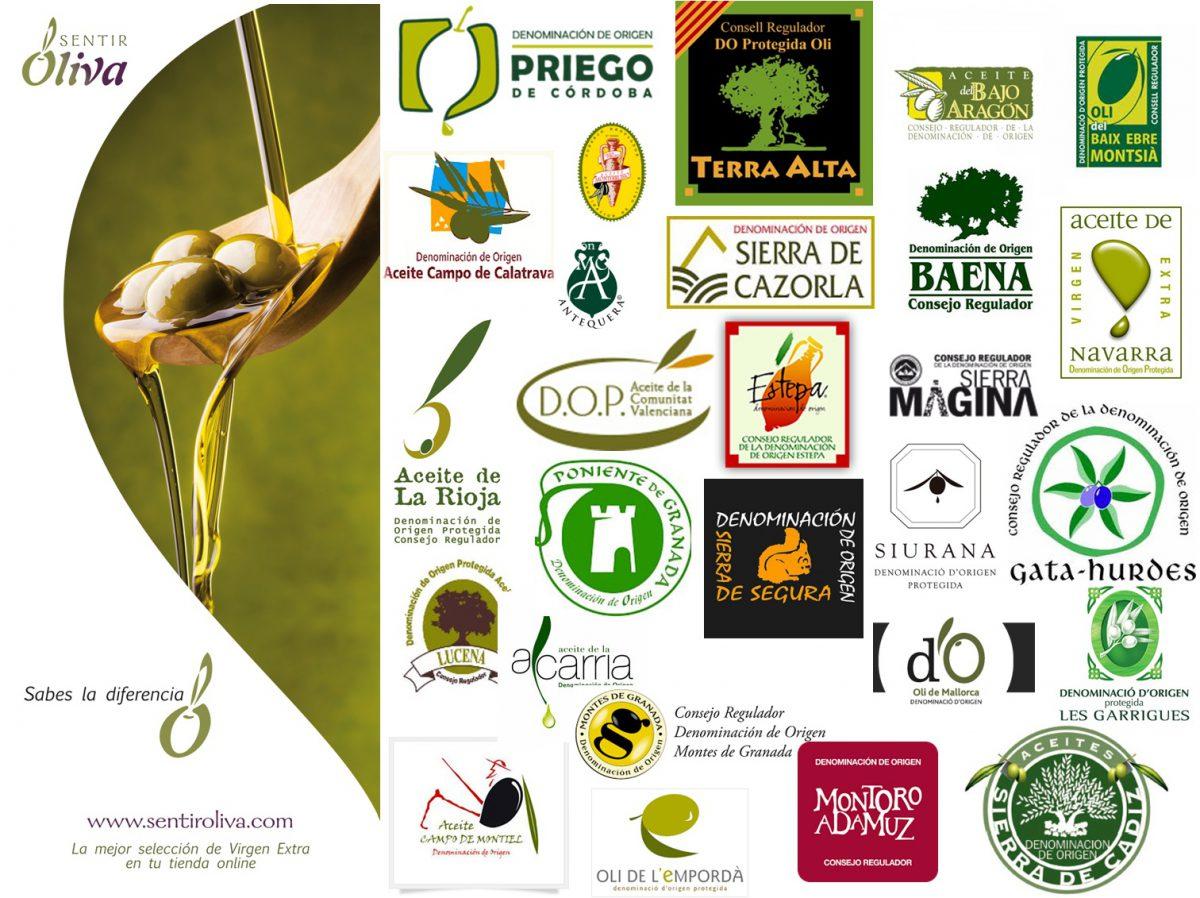 Descubre los aceites con Denominación de Origen Protegida en España