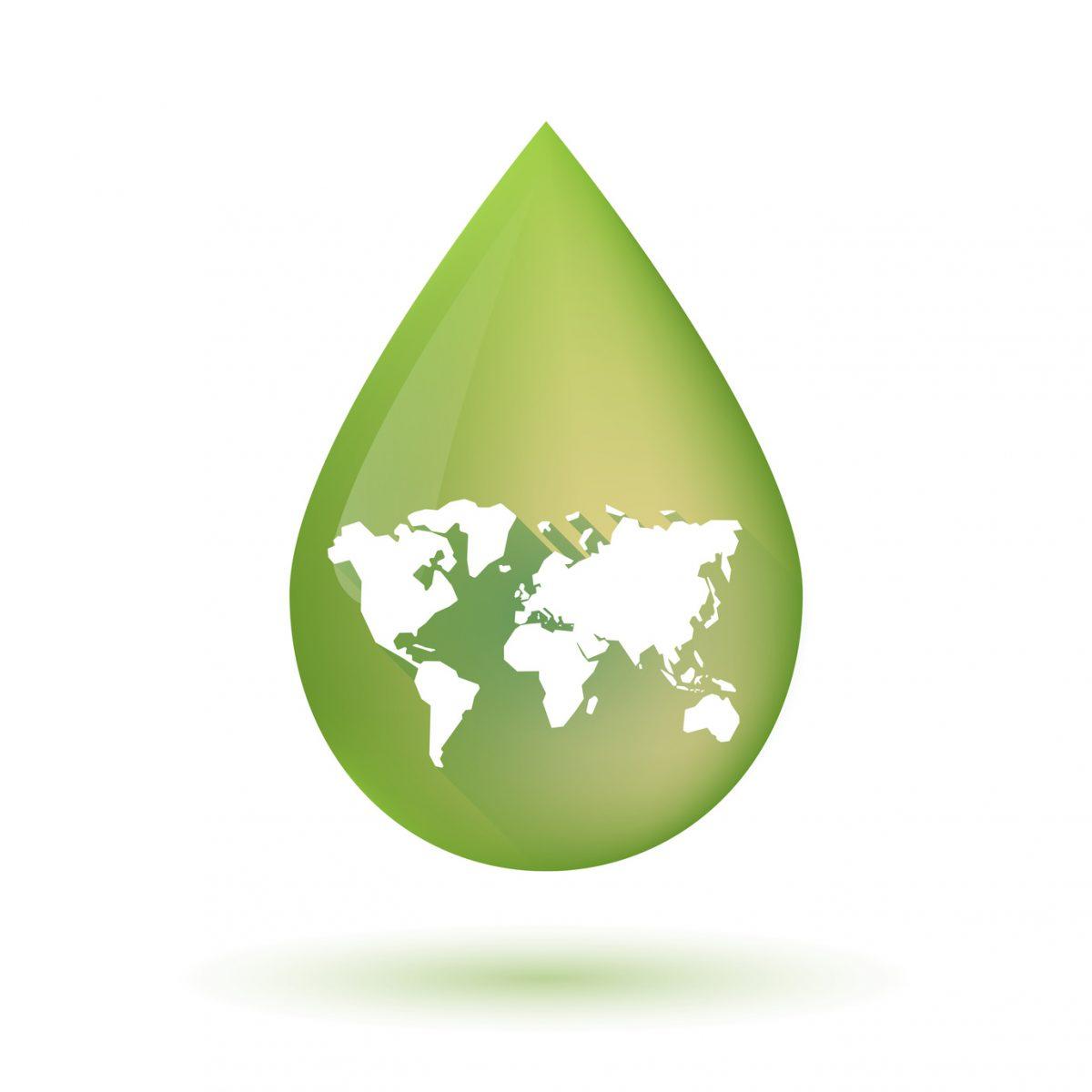 ¿Cuáles son los principales países productores de aceite de oliva?